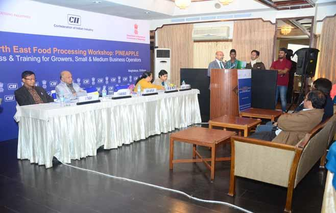 CII North East Food Processing Workshop