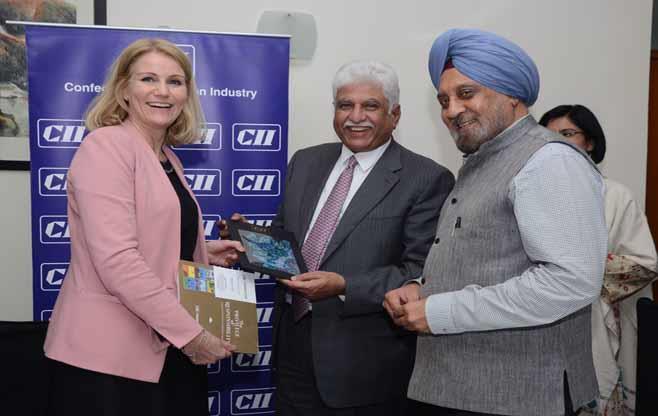 CII Interaction