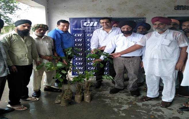 CII Trees Plantation Drive at Khanna