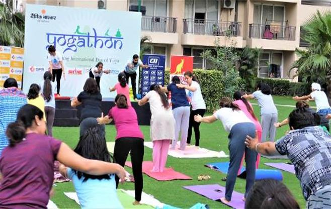 CII Ludhiana celebrates Yoga Day