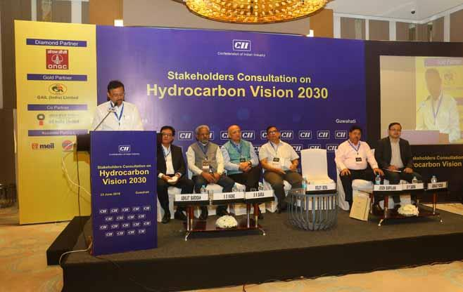 Stakeholders Consultation - Hydrocarbon
