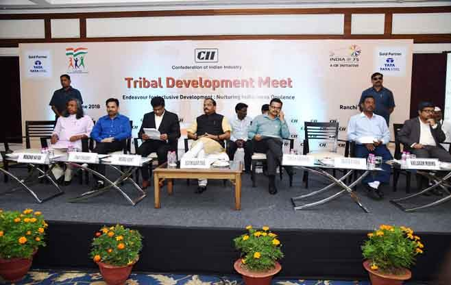 Tribal Development Meet
