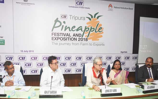CII Pineapple Festival and Exposition
