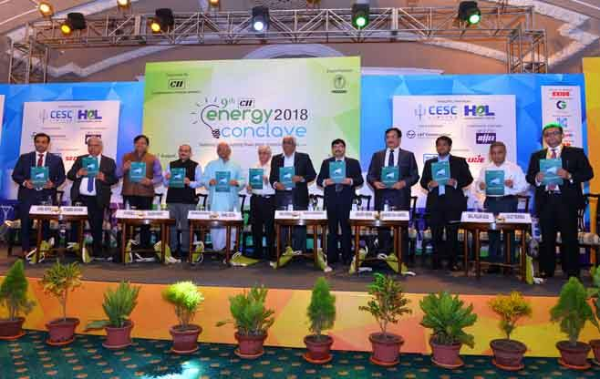 Unveiling of a CII-BCG Report
