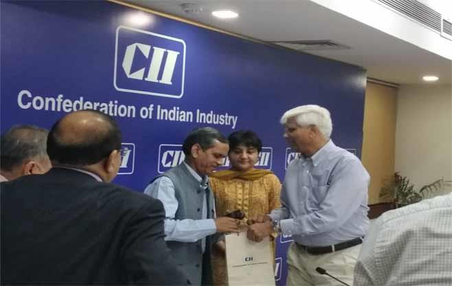 2nd CII National MSME Council Meeting