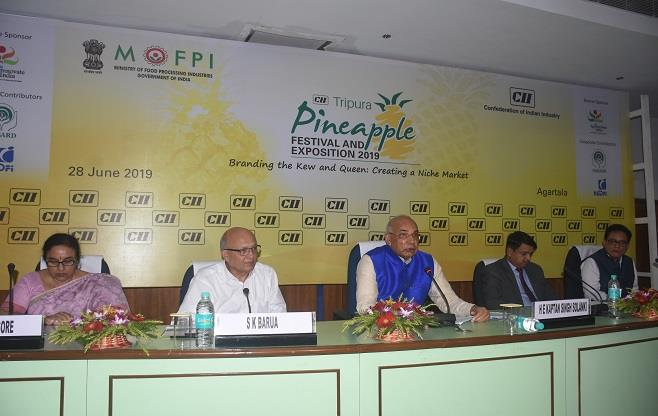 4th CII Tripura Pineapple Festival