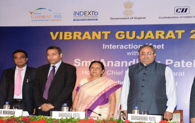 Curtain Raiser - Vibrant Gujarat 2015